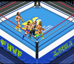 Classic WWF wrestlers!
