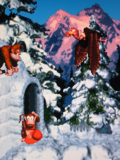 Donkey Kong Country ended 1994 with a bang