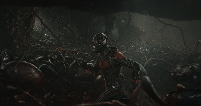 I'm telling y'all... Ant-Man makers were fans of Harley...