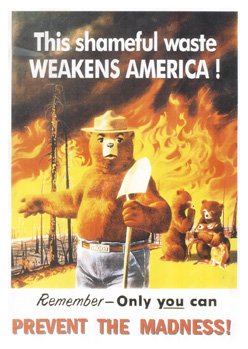 Capcom makes Smokey a sad bear