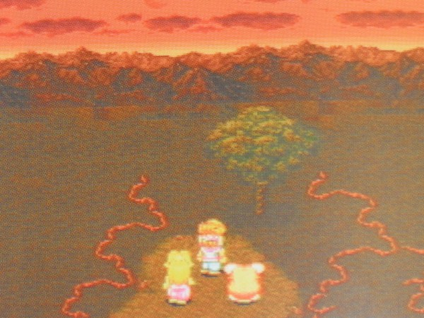 Why am I so drawn to the Tree of Mana??