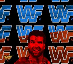 WWFRaw2