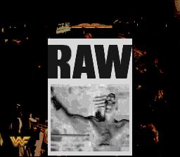 WWFRaw2b