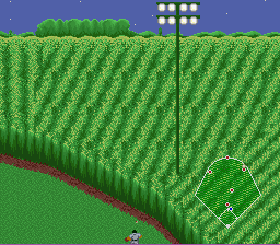 The ball cant roll into the cornfield